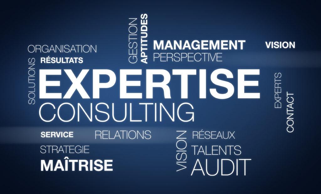 Mots-clés liés au domaine de l'entreprise, dont l'audit gratuit.